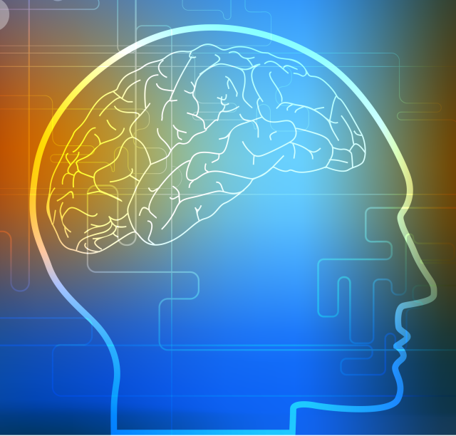 Beginning Steps to Brain Training
